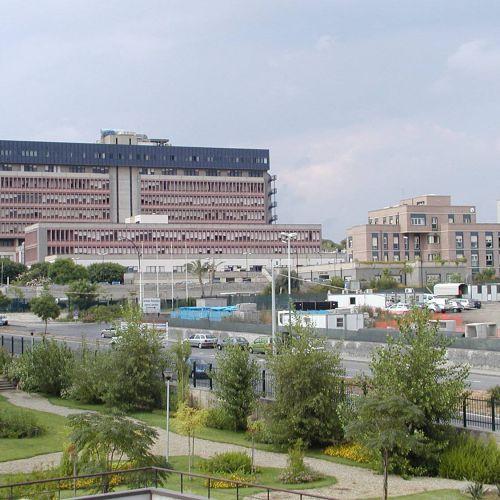 """Azienda Ospedaliero – Universitaria """"Policlinico Vittorio Emanuele"""